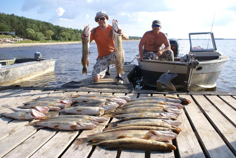 Рыболовный отдых рыбинское водохранилище