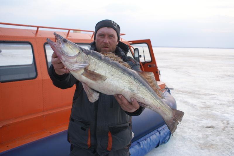 Места для ловли рыбы в рыбинске
